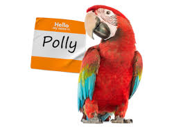 happy new year from polly chan